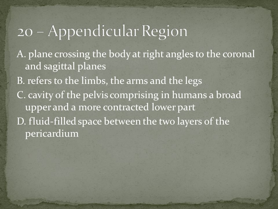 A. plane crossing the body at right angles to the coronal and sagittal planes B.