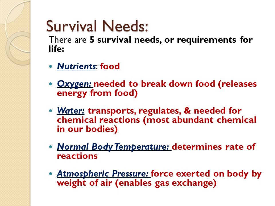 Survival Needs: There are 5 survival needs, or requirements for life: Nutrients: food Oxygen: needed to break down food (releases energy from food) Wa