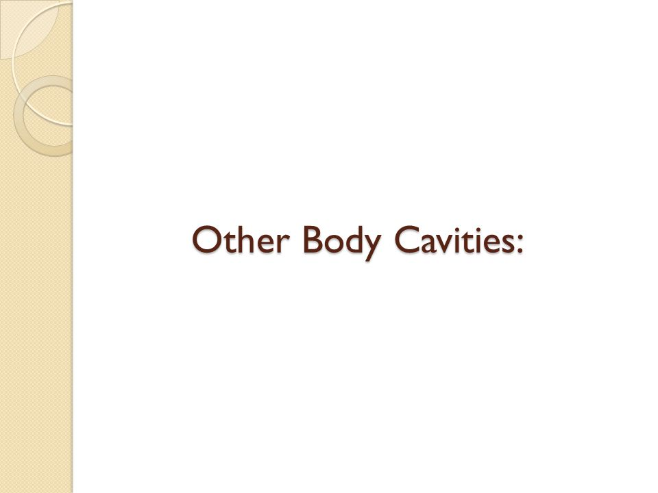 Other Body Cavities: