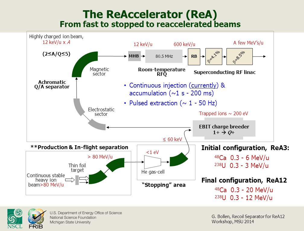 The ReAccelerator (ReA) From fast to stopped to reaccelerated beams He gas-cell Room-temperature RFQ  =4.1% > 80 MeV/u EBIT charge breeder 1+  Q+ Trapped ions ~ 200 eV ≤ 60 keV Highly charged ion beam, 12 keV/u x A (2≤A/Q≤5) Magnetic sector Achromatic Q/A separator Electrostatic sector Continuous stable heavy ion beam>80 MeV/u Superconducting RF linac Thin foil target <1 eV  =8.5% 600 keV/u 80.5 MHz MHB RB **Production & In-flight separation Stopping area 12 keV/u 48 Ca 0.3 - 20 MeV/u 238 U 0.3 - 12 MeV/u Final configuration, ReA12 Initial configuration, ReA3: 48 Ca 0.3 - 6 MeV/u 238 U 0.3 - 3 MeV/u A few MeV's/u Continuous injection (currently) & accumulation (~1 s - 200 ms) Pulsed extraction (~ 1 - 50 Hz) G.
