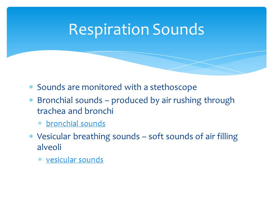  Sounds are monitored with a stethoscope  Bronchial sounds – produced by air rushing through trachea and bronchi  bronchial sounds bronchial sounds