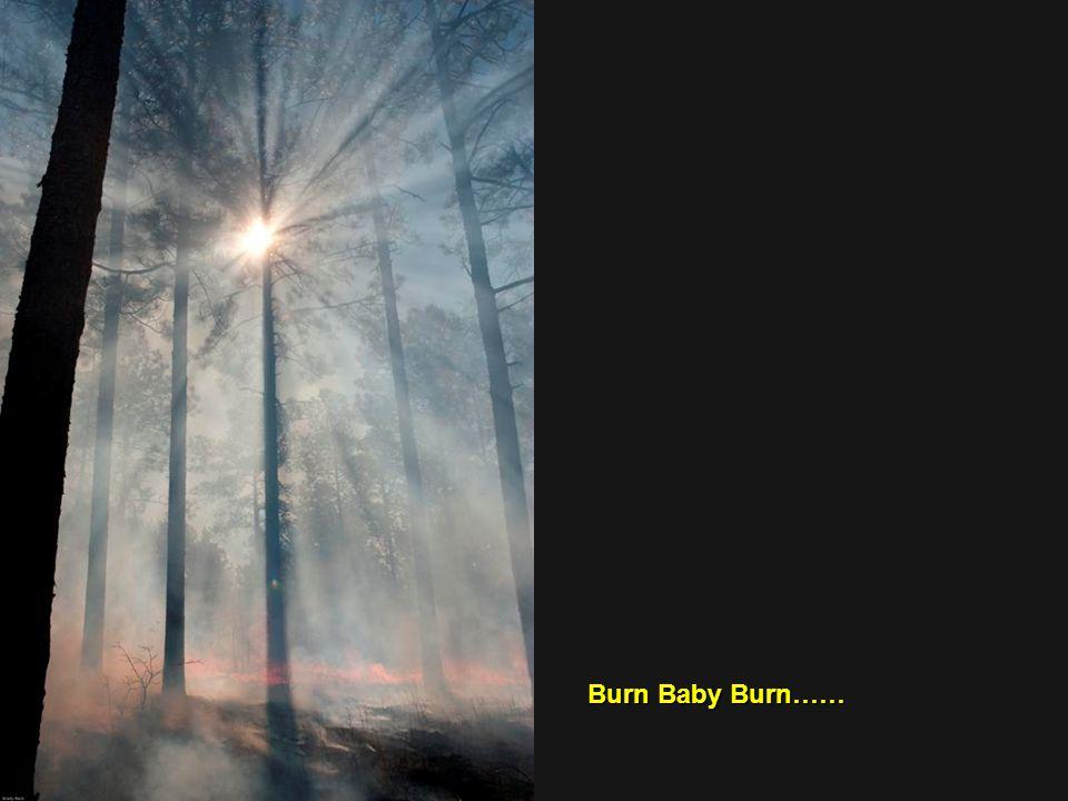 Burn Baby Burn……