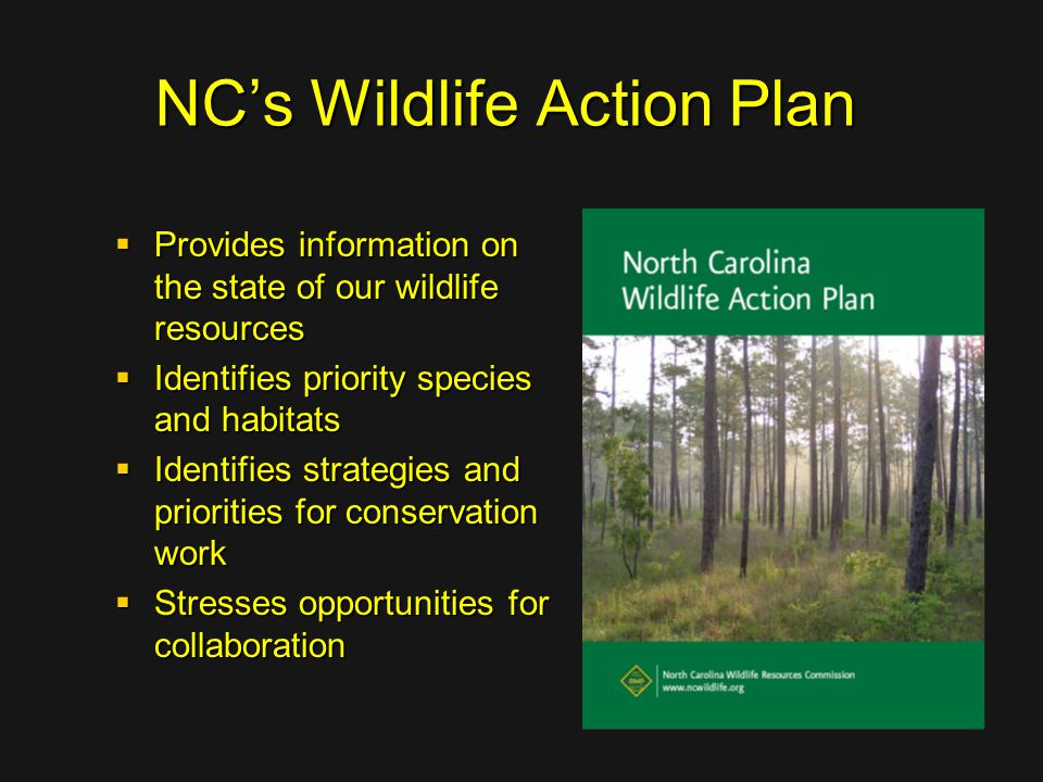 NC's Wildlife Action Plan  Provides information on the state of our wildlife resources  Identifies priority species and habitats  Identifies strate