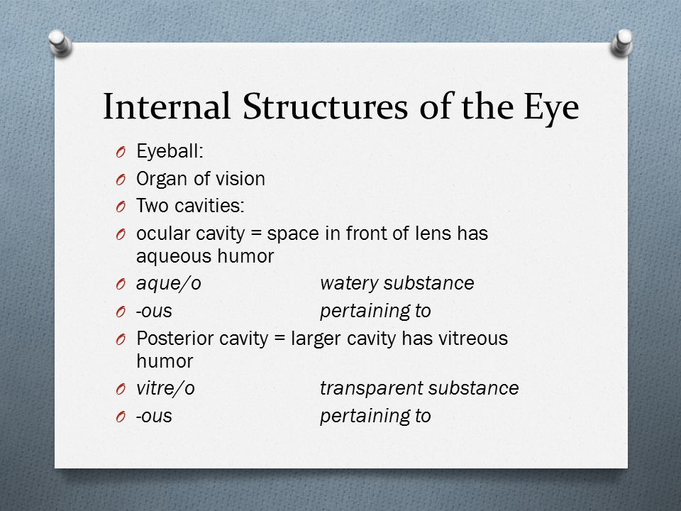 Internal Structures of the Eye O Eyeball: O Organ of vision O Two cavities: O ocular cavity = space in front of lens has aqueous humor O aque/owatery substance O -ouspertaining to O Posterior cavity = larger cavity has vitreous humor O vitre/otransparent substance O -ouspertaining to