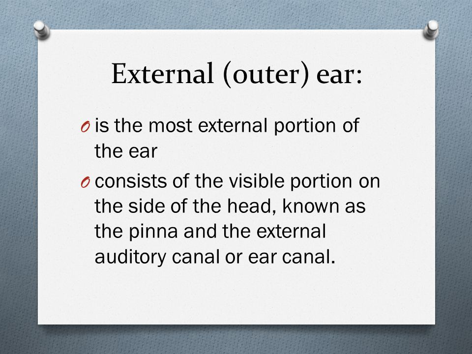 Contd: O Pinna: (also called the auricle) the visible part of the outer ear.