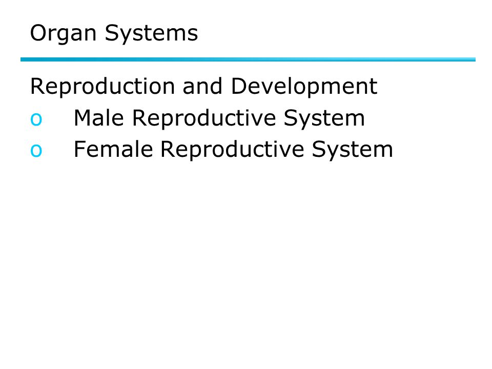 Organ Systems Reproduction and Development oMale Reproductive System oFemale Reproductive System