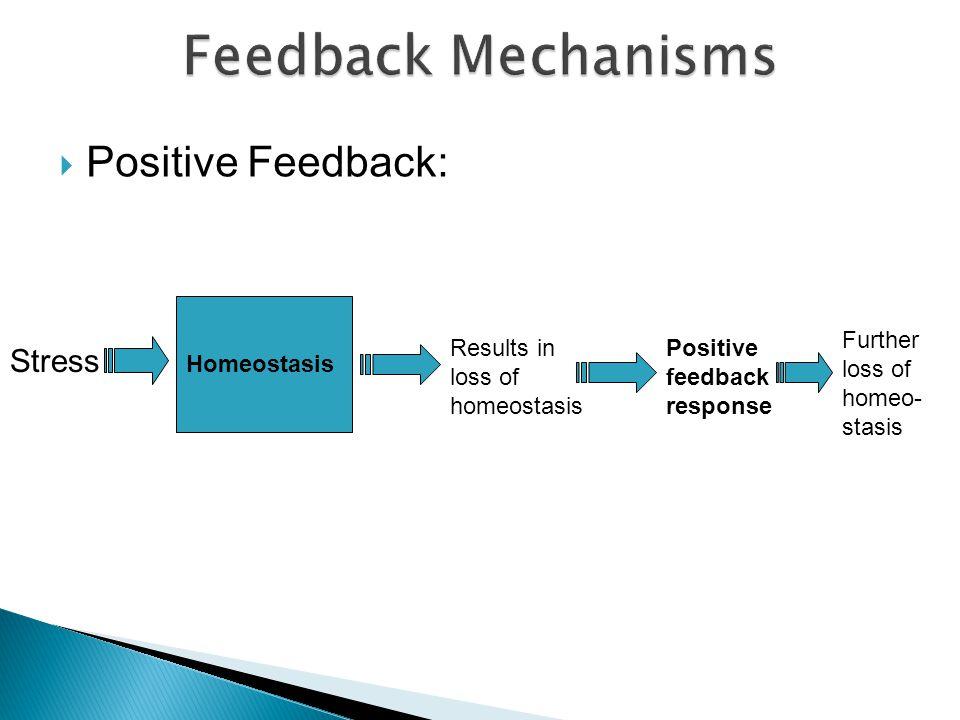 Positive Feedback: Homeostasis Stress Results in loss of homeostasis Positive feedback response Further loss of homeo- stasis