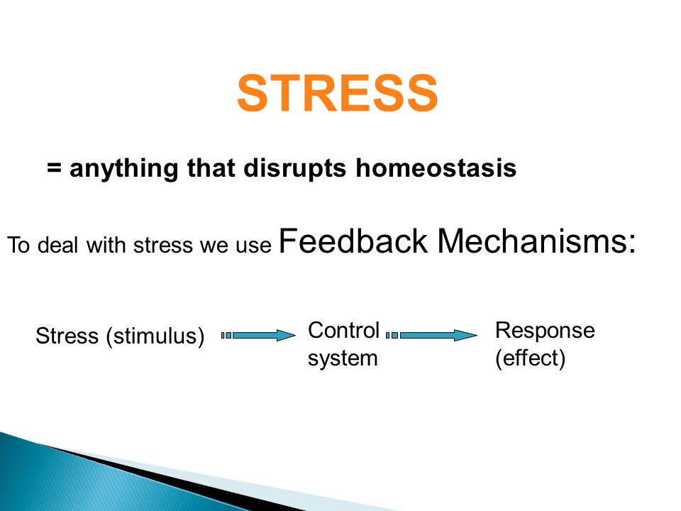 STRESS To deal with stress we use Feedback Mechanisms: Control system Response (effect) = anything that disrupts homeostasis Stress (stimulus)