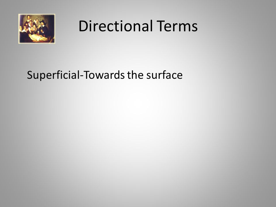Directional Terms Superficial-Towards the surface