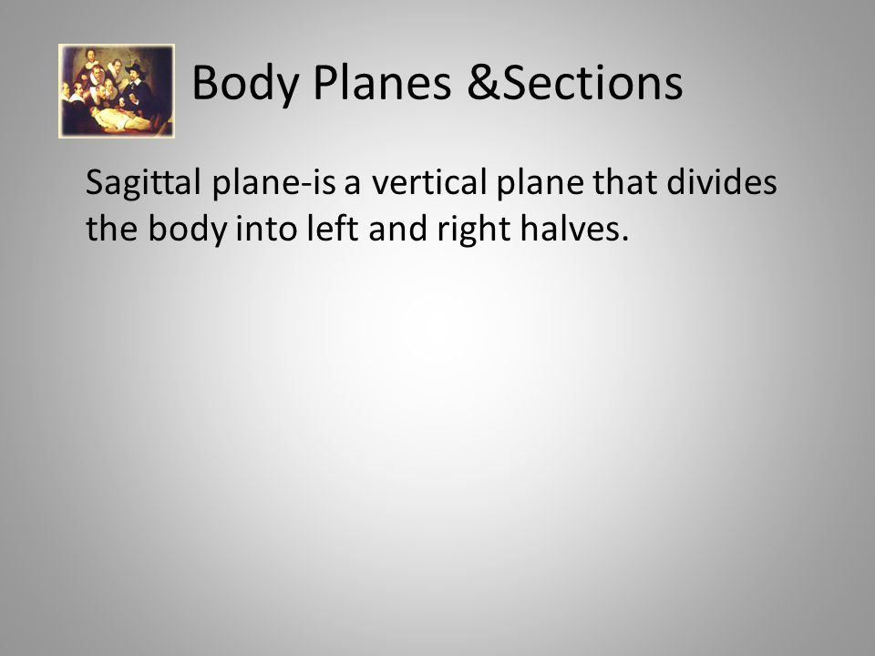 Body Planes &Sections Sagittal plane-is a vertical plane that divides the body into left and right halves.