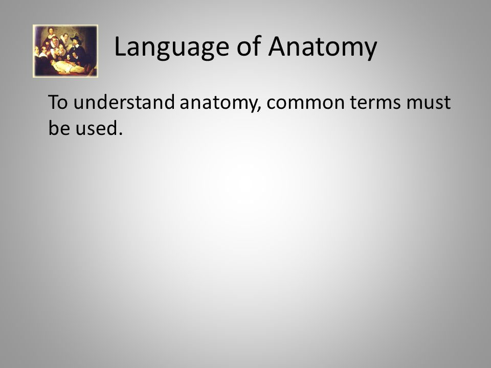 Language of Anatomy To understand anatomy, common terms must be used.