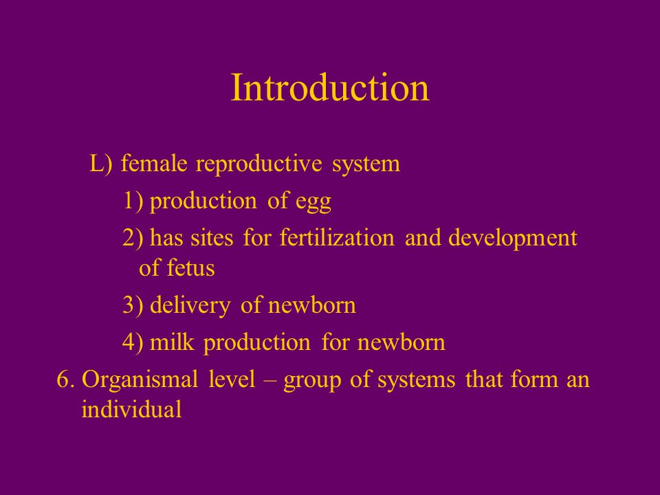 Introduction L) female reproductive system 1) production of egg 2) has sites for fertilization and development of fetus 3) delivery of newborn 4) milk production for newborn 6.