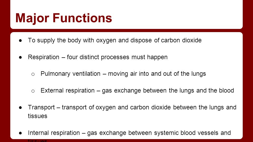 Major Functions ●To supply the body with oxygen and dispose of carbon dioxide ●Respiration – four distinct processes must happen o Pulmonary ventilati
