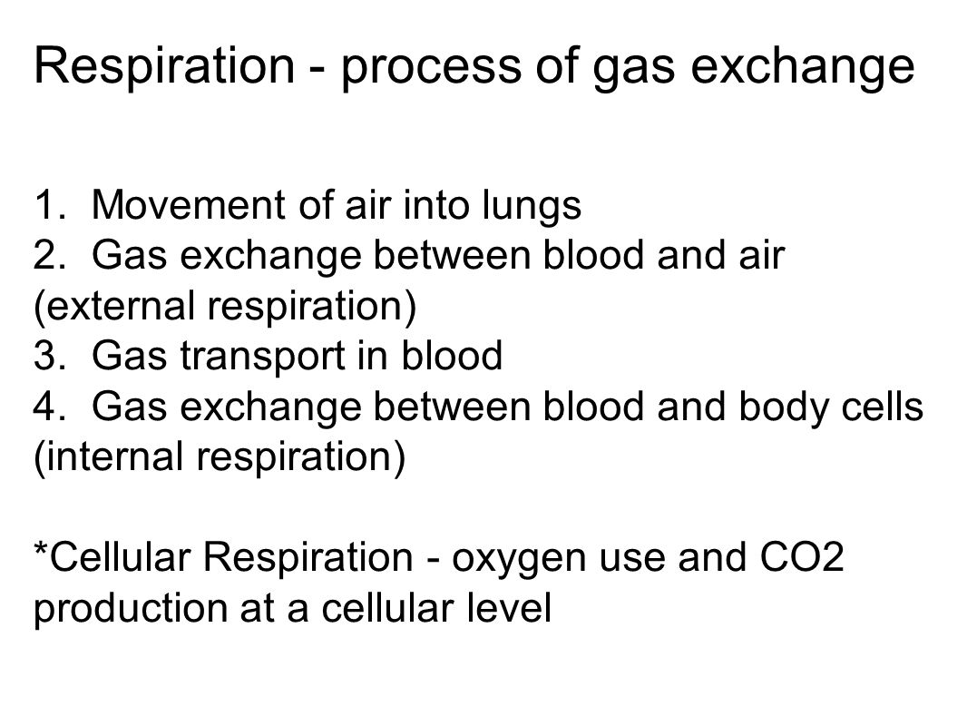 Respiration - process of gas exchange 1. Movement of air into lungs 2. Gas exchange between blood and air (external respiration) 3. Gas transport in b