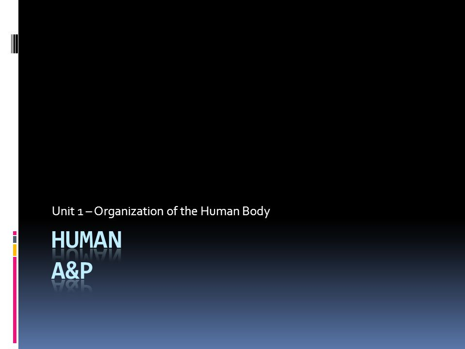 Unit 1 – Organization of the Human Body