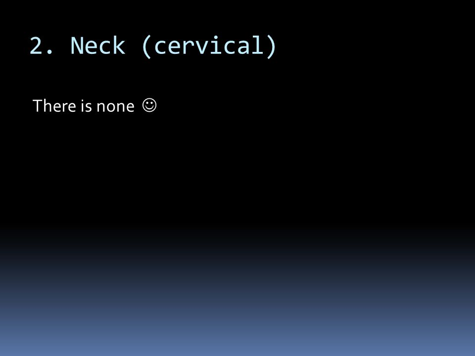 2. Neck (cervical) There is none