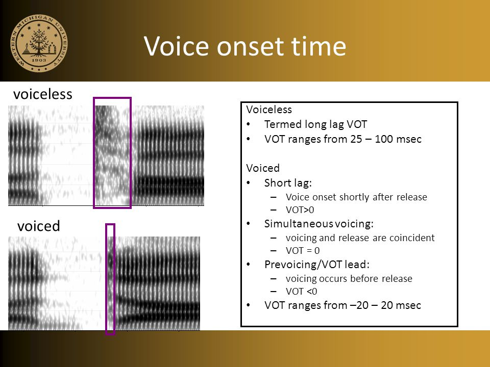 Voice onset time Voiceless Termed long lag VOT VOT ranges from 25 – 100 msec Voiced Short lag: – Voice onset shortly after release – VOT>0 Simultaneous voicing: – voicing and release are coincident – VOT = 0 Prevoicing/VOT lead: – voicing occurs before release – VOT <0 VOT ranges from –20 – 20 msec voiceless voiced