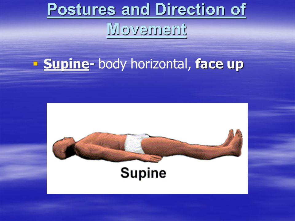  Supine-face up  Supine- body horizontal, face up
