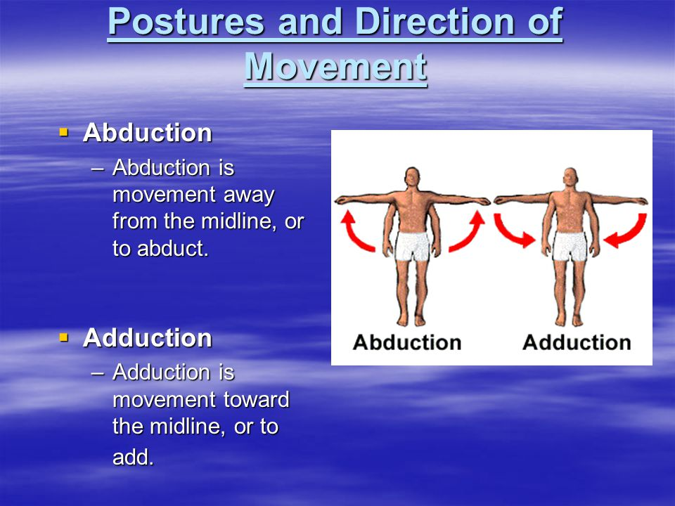  Abduction –Abduction is movement away from the midline, or to abduct.  Adduction –Adduction is movement toward the midline, or to add.