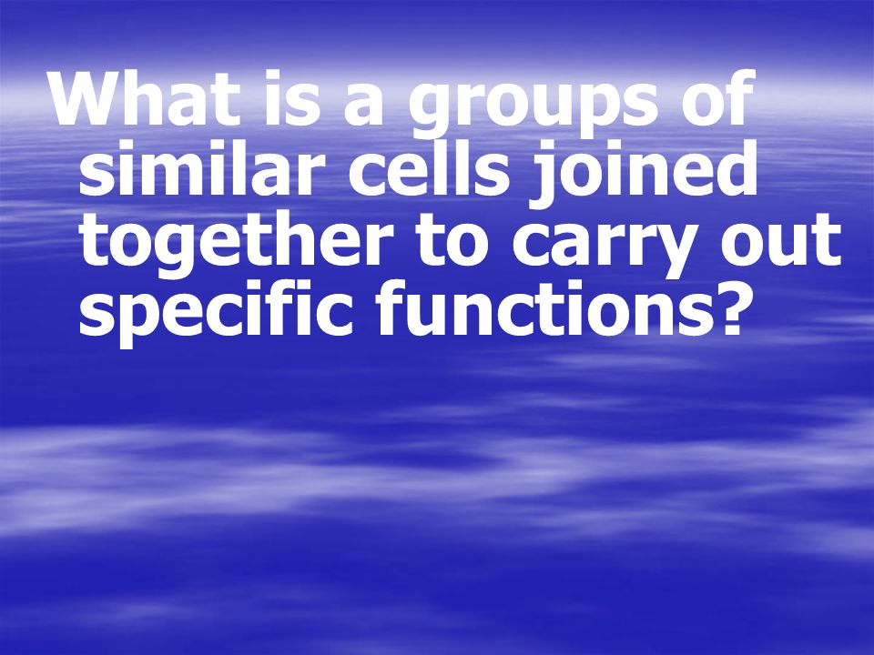 What is a groups of similar cells joined together to carry out specific functions?