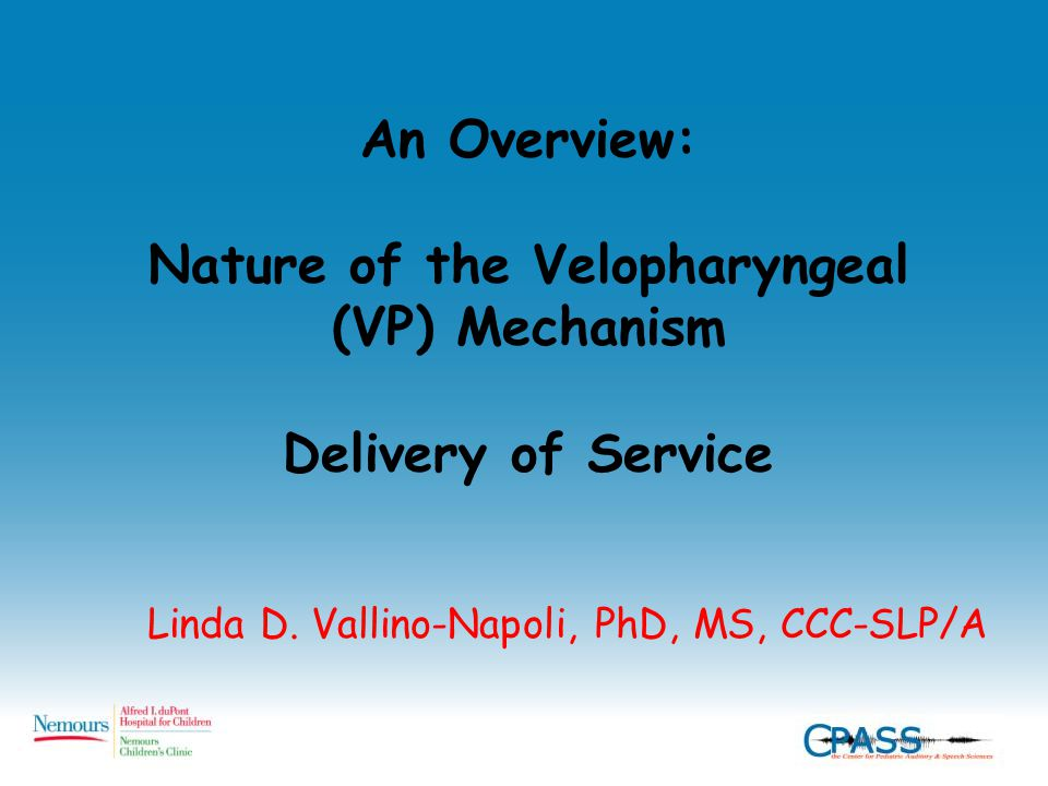 An Overview: Nature of the Velopharyngeal (VP) Mechanism Delivery of Service Linda D. Vallino-Napoli, PhD, MS, CCC-SLP/A