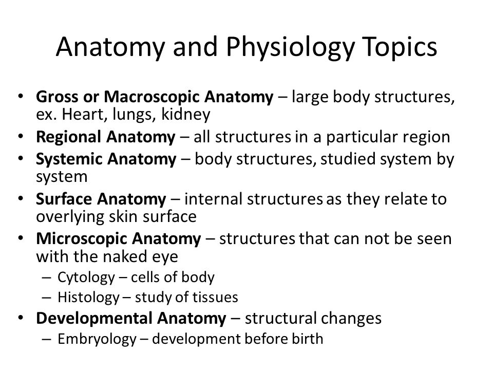 Essay questions for physiology | Custom paper Help xypaperohig ...