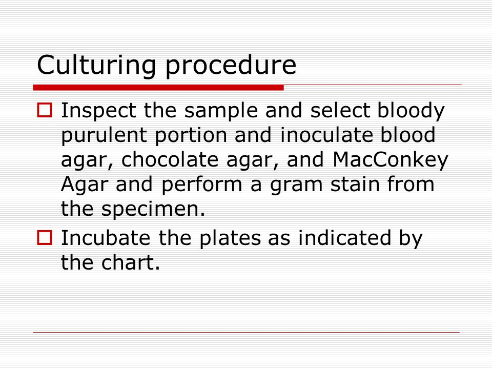 Culturing procedure  Inspect the sample and select bloody purulent portion and inoculate blood agar, chocolate agar, and MacConkey Agar and perform a gram stain from the specimen.