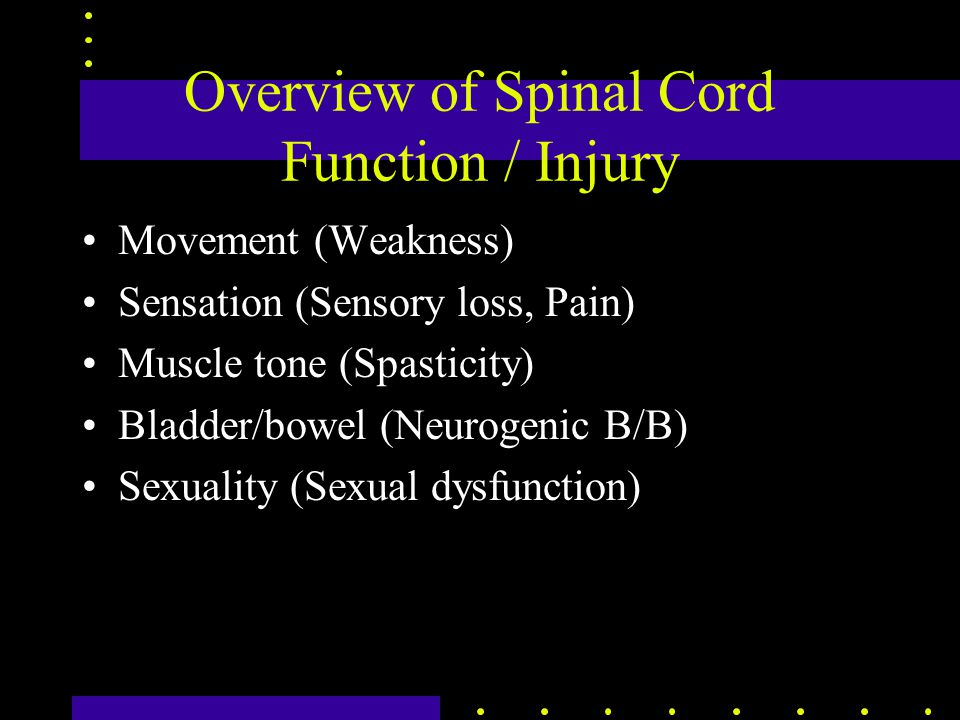 Overview of Spinal Cord Function / Injury Movement (Weakness) Sensation (Sensory loss, Pain) Muscle tone (Spasticity) Bladder/bowel (Neurogenic B/B) Sexuality (Sexual dysfunction)