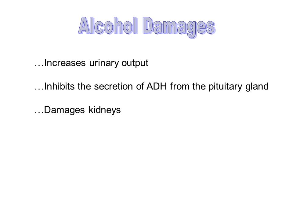 …Increases urinary output …Inhibits the secretion of ADH from the pituitary gland …Damages kidneys