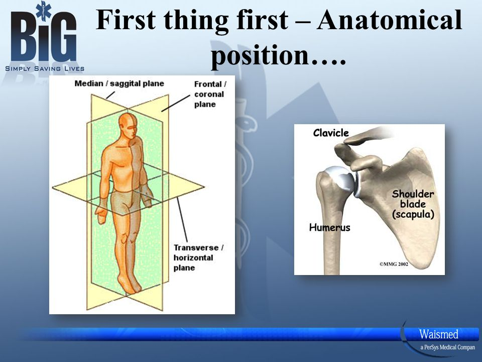 First thing first – Anatomical position….