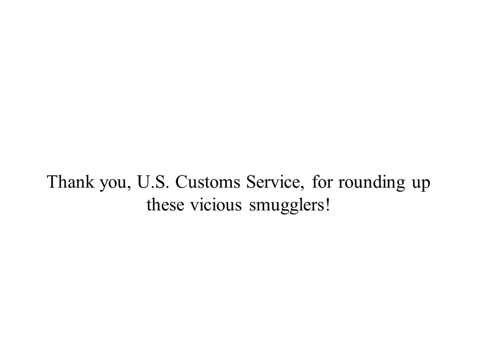 Thank you, U.S. Customs Service, for rounding up these vicious smugglers!