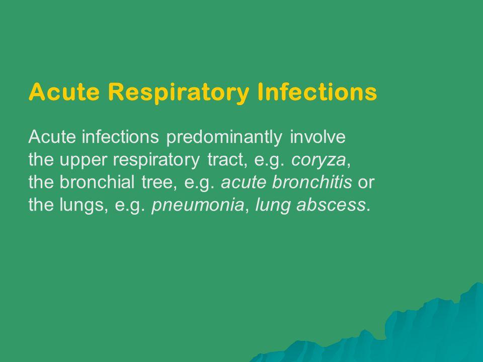 Acute Respiratory Infections Acute infections predominantly involve the upper respiratory tract, e.g. coryza, the bronchial tree, e.g. acute bronchiti