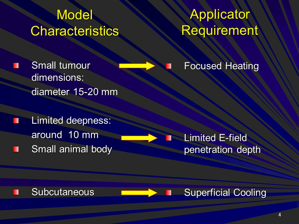 4 Model Characteristics Small tumour dimensions: diameter 15-20 mm Limited deepness: around 10 mm Small animal body Subcutaneous Applicator Requiremen