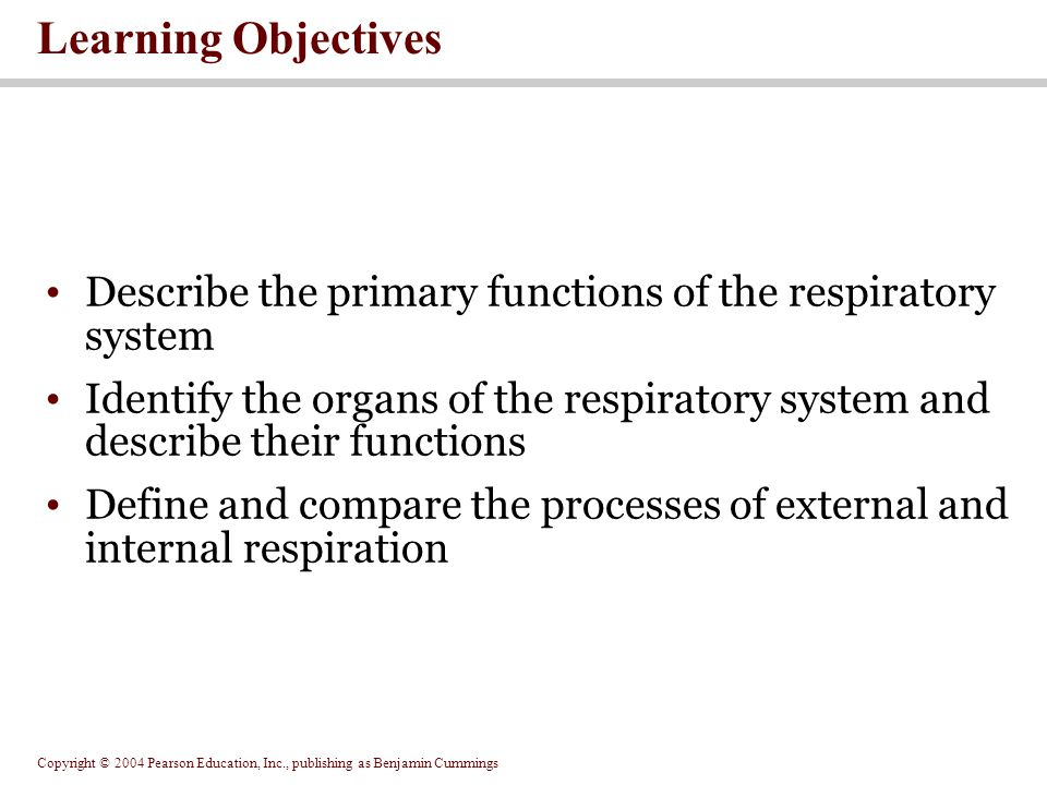 Copyright © 2004 Pearson Education, Inc., publishing as Benjamin Cummings Learning Objectives Describe the primary functions of the respiratory system