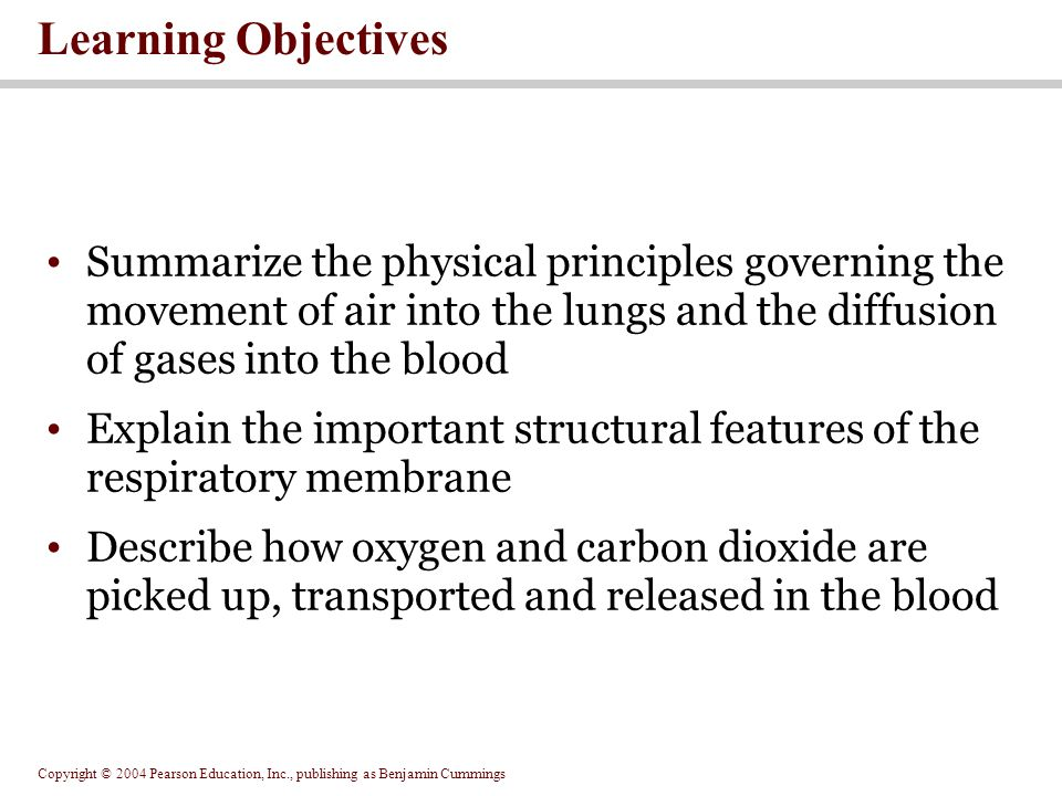 Copyright © 2004 Pearson Education, Inc., publishing as Benjamin Cummings Learning Objectives Summarize the physical principles governing the movement