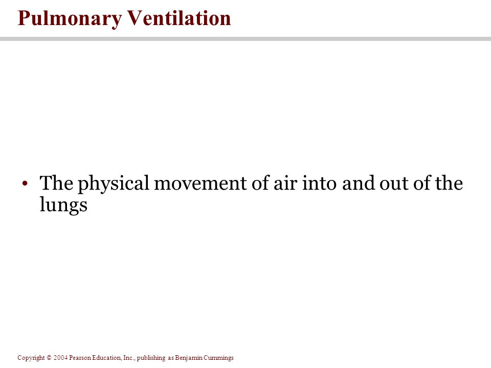 Copyright © 2004 Pearson Education, Inc., publishing as Benjamin Cummings The physical movement of air into and out of the lungs Pulmonary Ventilation