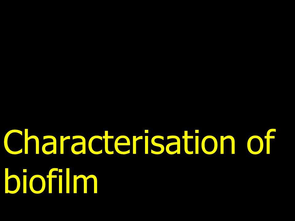 Characterisation of biofilm