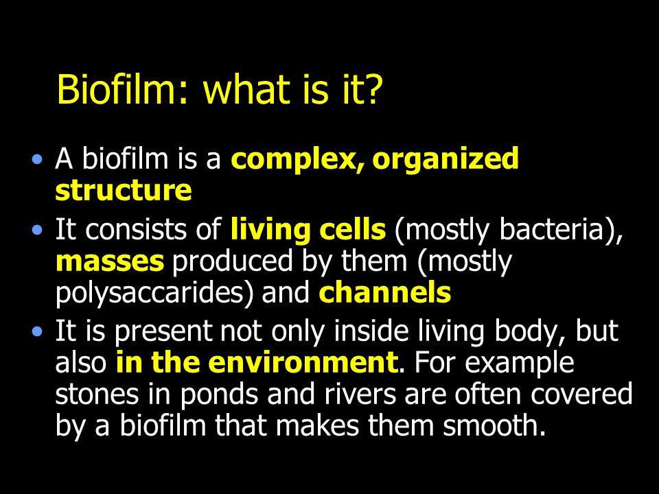 Biofilm: what is it.