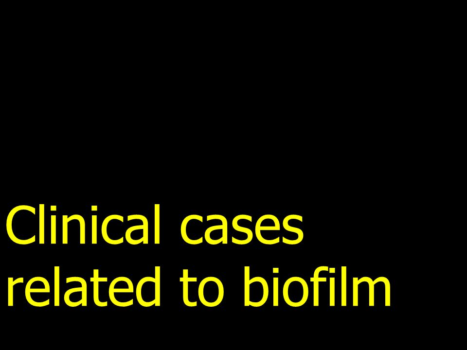 Clinical cases related to biofilm