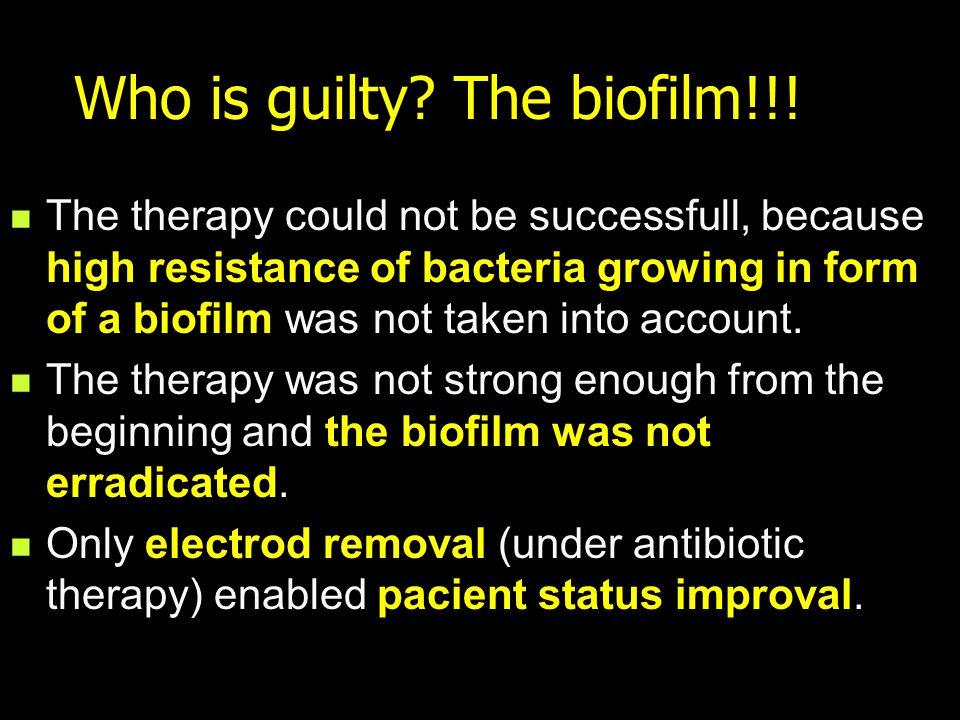 Catheter biofilm webs.wichita.edu