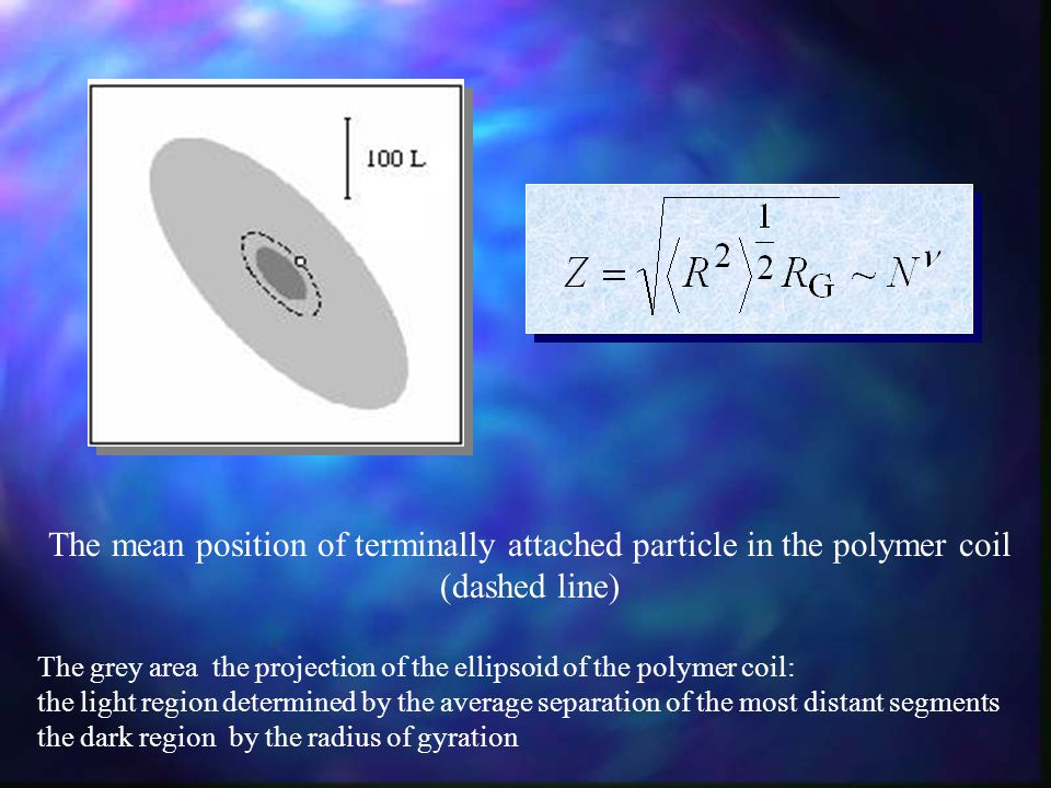 The mean position of terminally attached particle in the polymer coil (dashed line) The grey area ­ the projection of the ellipsoid of the polymer coil: the light region determined by the average separation of the most distant segments the dark region ­ by the radius of gyration