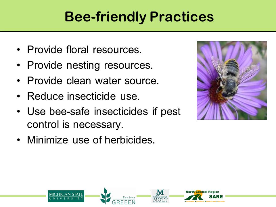 Bee-friendly Practices Provide floral resources. Provide nesting resources.