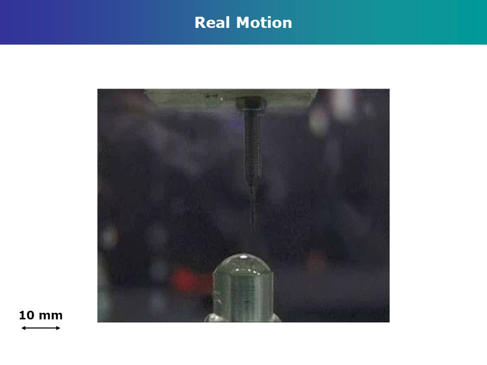 Real Motion 10 mm