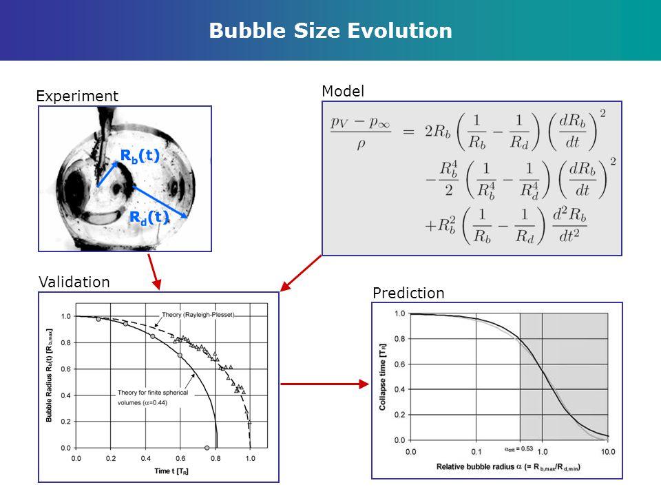 Bubble Size Evolution Model Experiment Validation Prediction