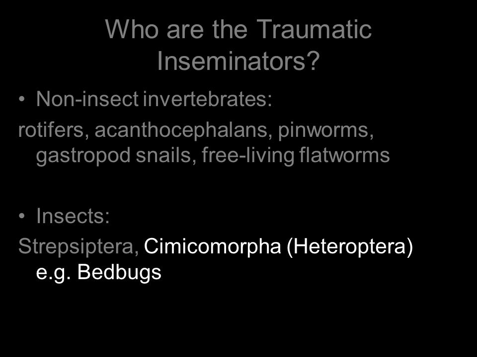 Who are the Traumatic Inseminators.