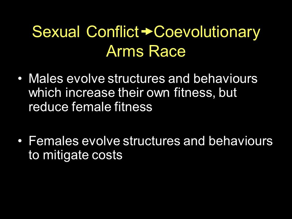 Sexual Conflict Coevolutionary Arms Race Males evolve structures and behaviours which increase their own fitness, but reduce female fitness Females evolve structures and behaviours to mitigate costs