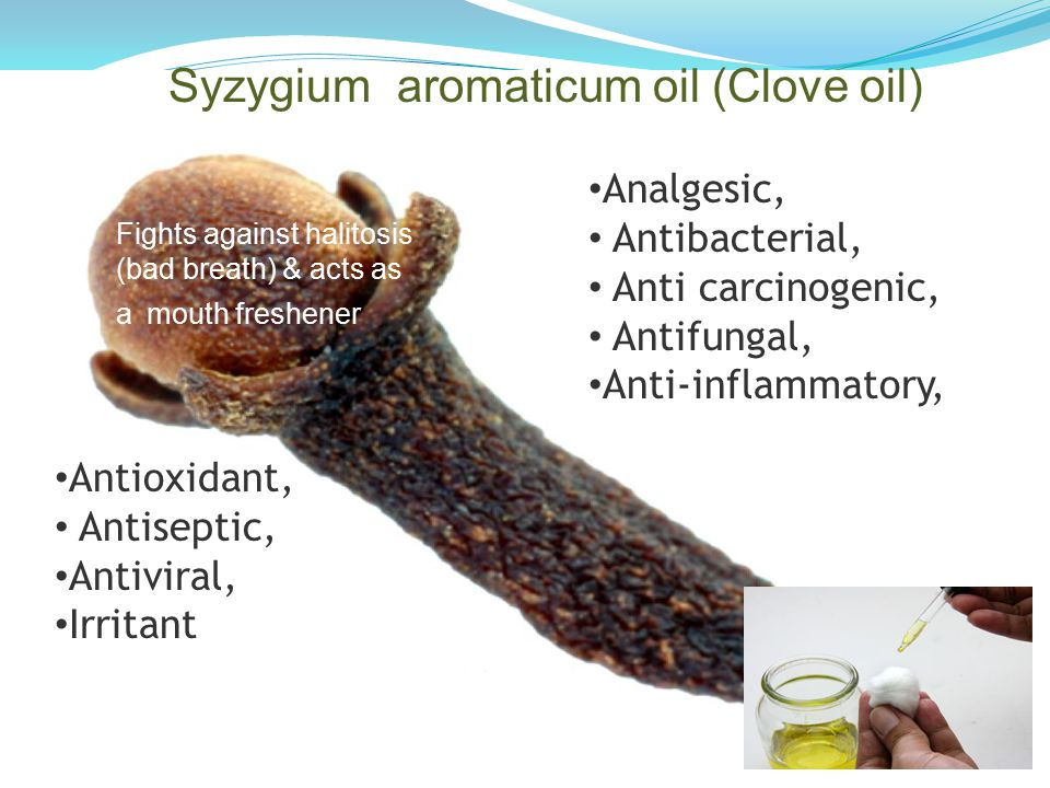 Syzygium aromaticum oil (Clove oil) Analgesic, Antibacterial, Anti carcinogenic, Antifungal, Anti-inflammatory, Antioxidant, Antiseptic, Antiviral, Irritant Fights against halitosis (bad breath) & acts as a mouth freshener