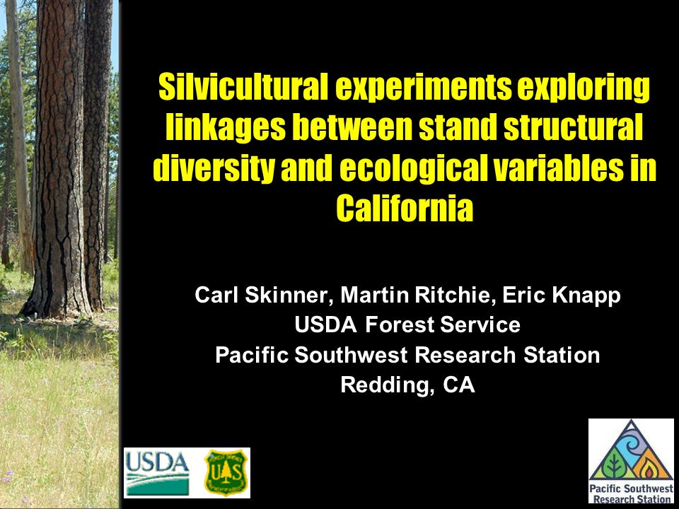 Silvicultural experiments exploring linkages between stand structural diversity and ecological variables in California Carl Skinner, Martin Ritchie, Eric Knapp USDA Forest Service Pacific Southwest Research Station Redding, CA Carl Skinner, Martin Ritchie, Eric Knapp USDA Forest Service Pacific Southwest Research Station Redding, CA