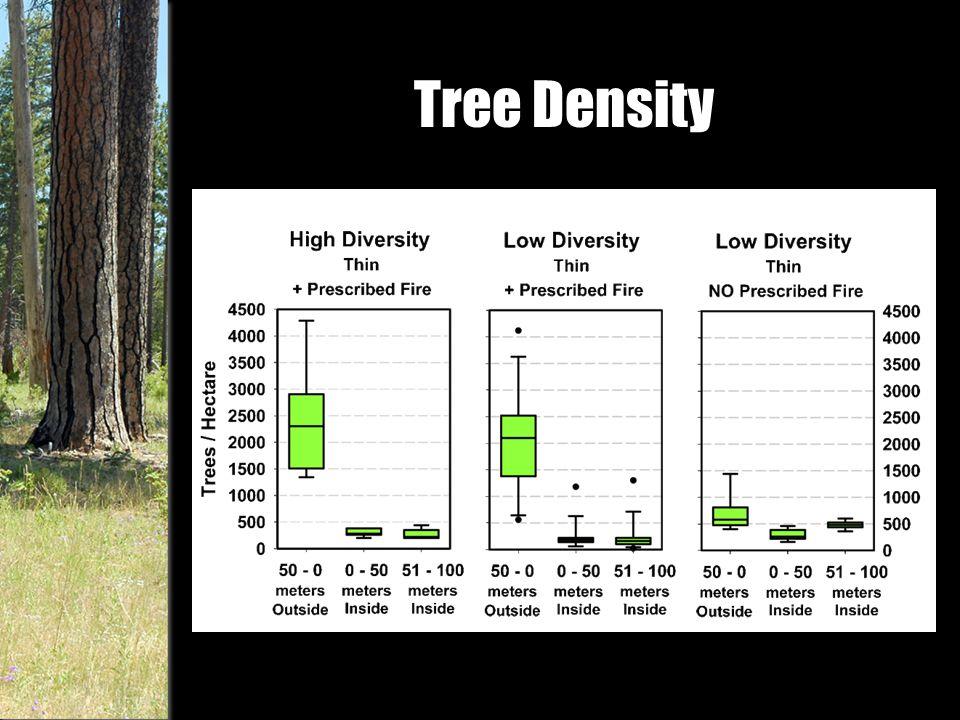 Tree Density