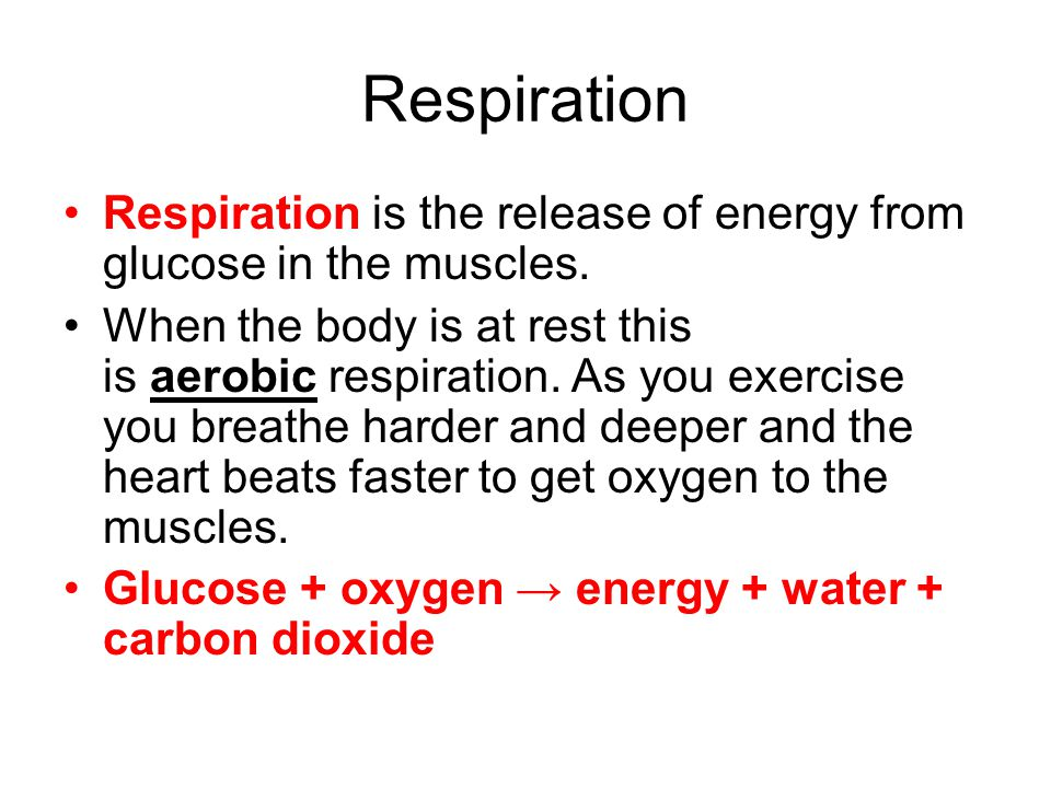 Respiration Respiration is the release of energy from glucose in the muscles. When the body is at rest this is aerobic respiration. As you exercise yo